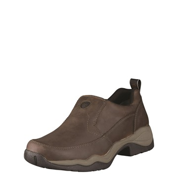Picture of Ariat Mens Ralley